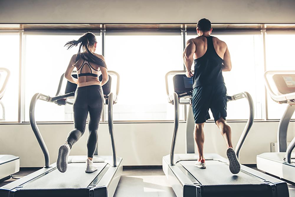 fitness shops